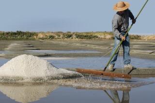 天命! 天日、自然海塩の作り方 ホッティーの塩